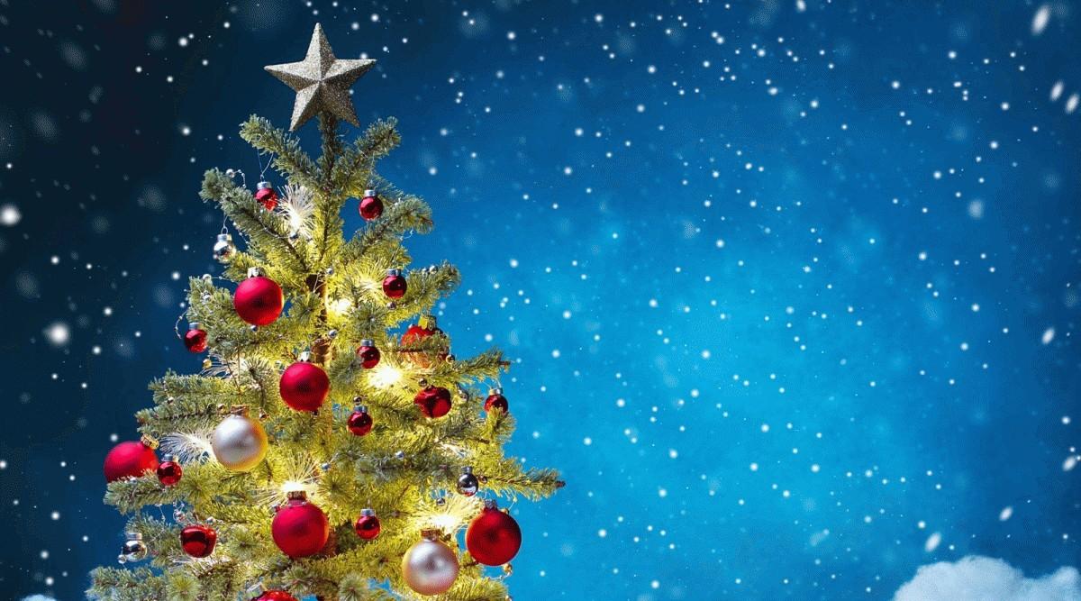 Veselé vánoce a úspěšný rok 2021